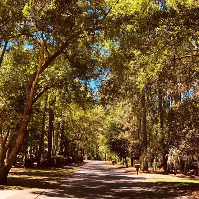 """On occasion traveling to new States, I get to experience neighborhoods and I always think, """"Could I live here?"""" and, """"What has someone choose this neighborhood?"""". Well, the small island of Hilton Head, SC is where my parents have chosen to call home after they moved from Washington, D.C.  I got to go for a few walks by myself to capture the beauty of this part of the country. No Filter, few cars, only me, nature, and a serene moment in time. So, would you live here?"""