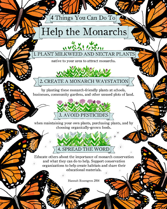 Help the Monarchs 8x10 72 res WEBBB.jpg