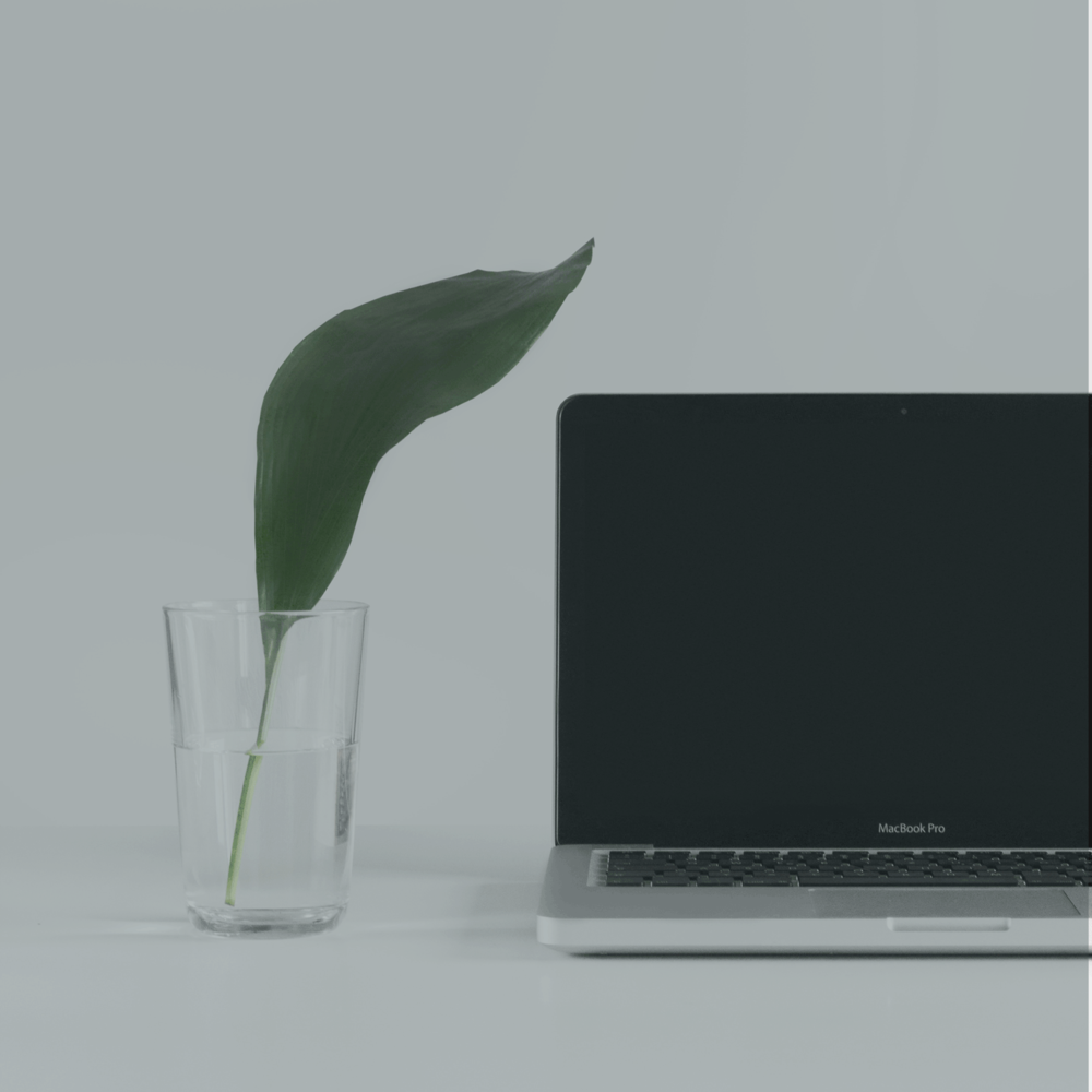 Laptop with Leaf