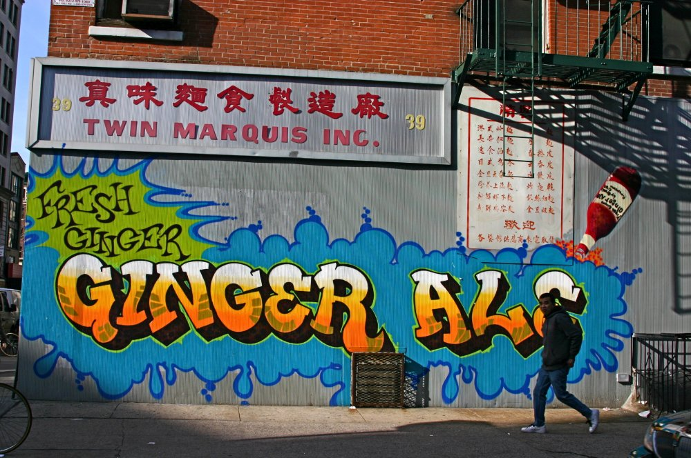 "Wall in Chinatown, New York City. Near Mrs. Lau's Senior Citizen Center. ""Mrs. Lau has been in America twice as long as she was ever in Hong Kong. She has lived in her apartment for fifty-five years. She says NY Chinatown is home."" -Meena, Same Sun Here"