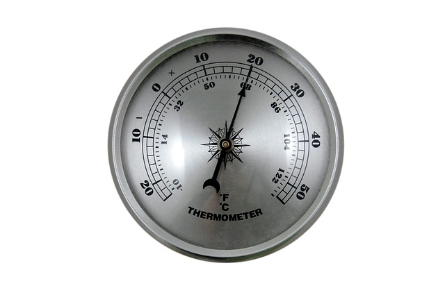 thermometer-428339_640.jpg