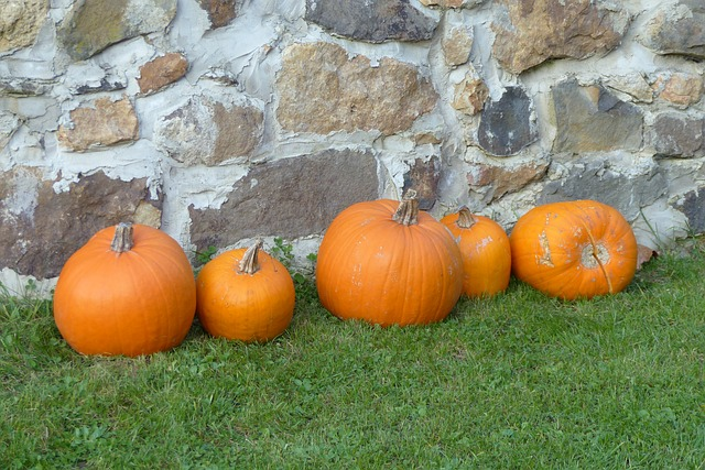 pumpkin-745421_640.jpg