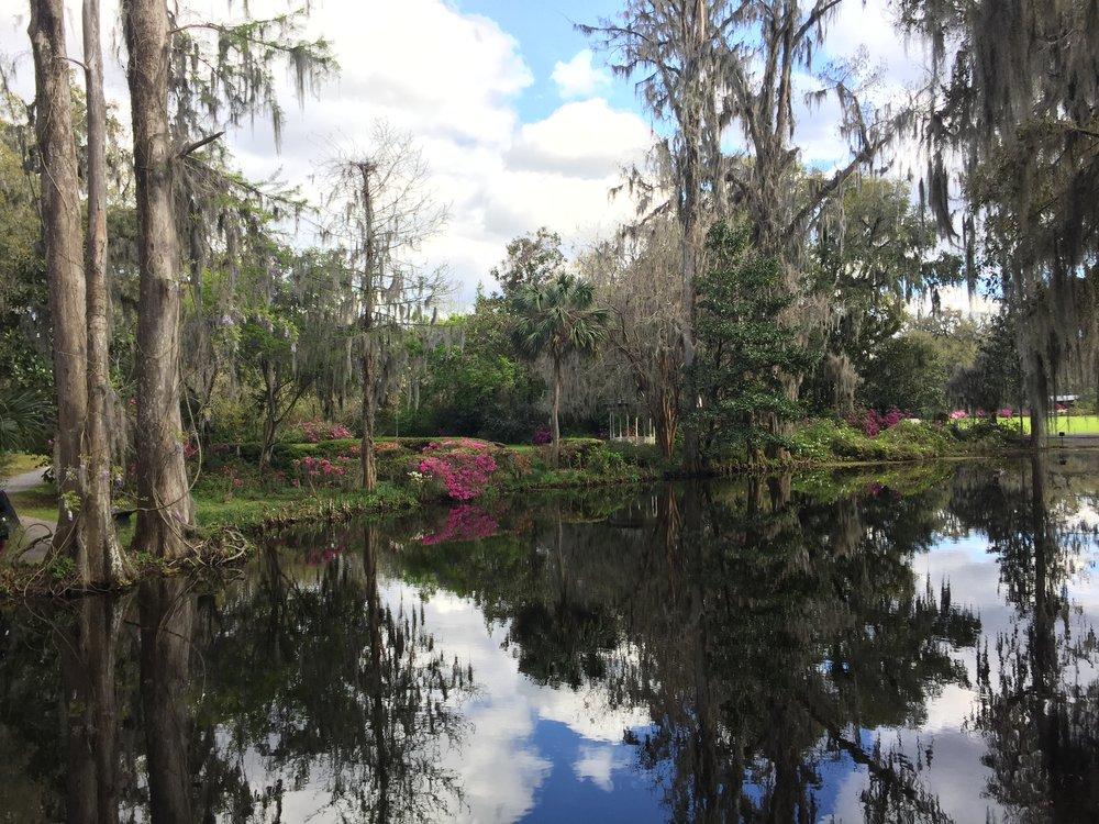 Southern Plantation - Georgia spring