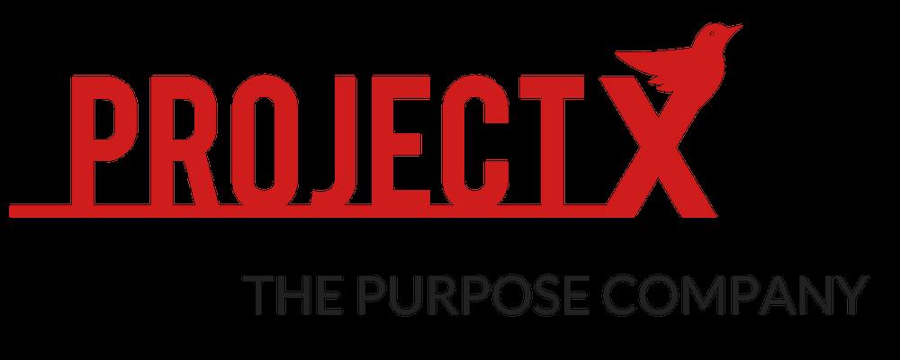 New SEC — Project X