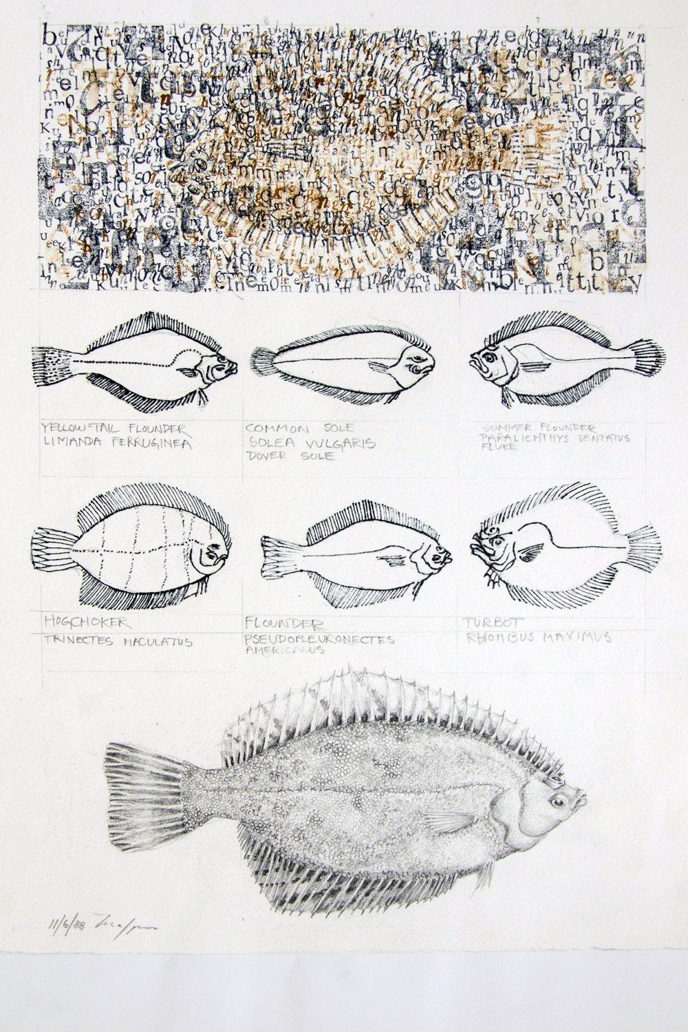Flounder Flurry