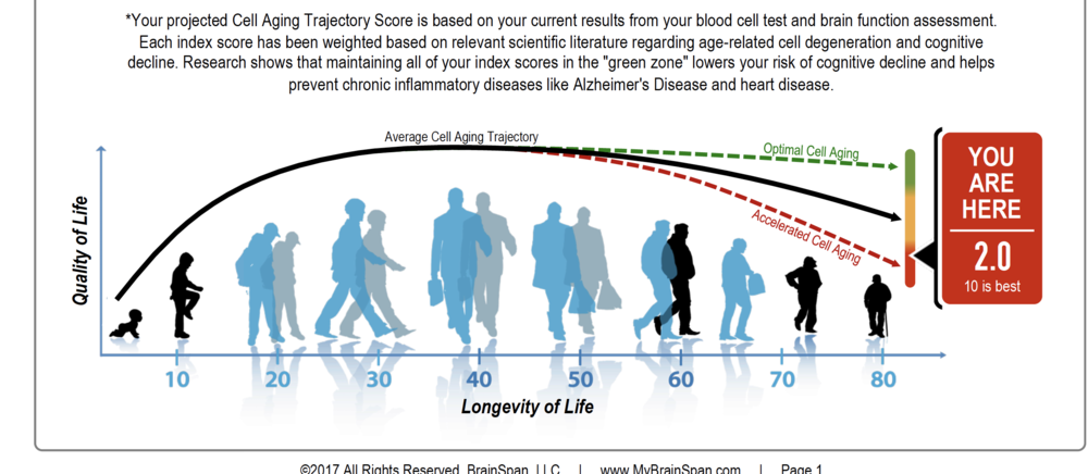 BrainSpan's patent pending algorithm examines factors that impact neurogenesis and cognitive decline and based on your predicted function today and how you really score, determine the path ahead.