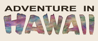adventure-in-hawaii-logo.png