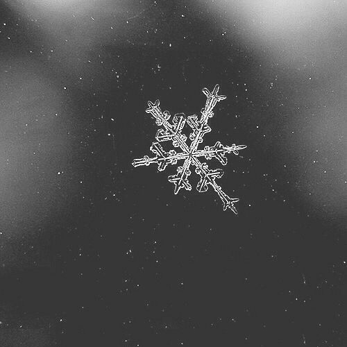 It Sounds Like Winter by Roman Robinson - It's that time of year! If you like the cold weather, the hot chocolate, the winter vibes and everything else that comes with the season, then you will love this playlist. Why? Because it sounds like winter! Happy holidays!Listen here on:Apple Music