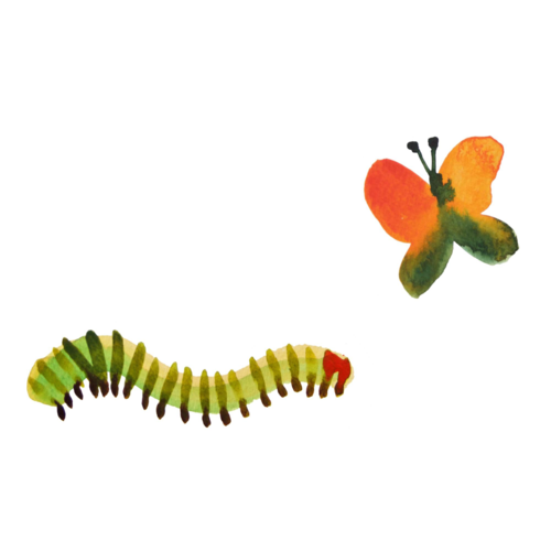 caterpillar.png