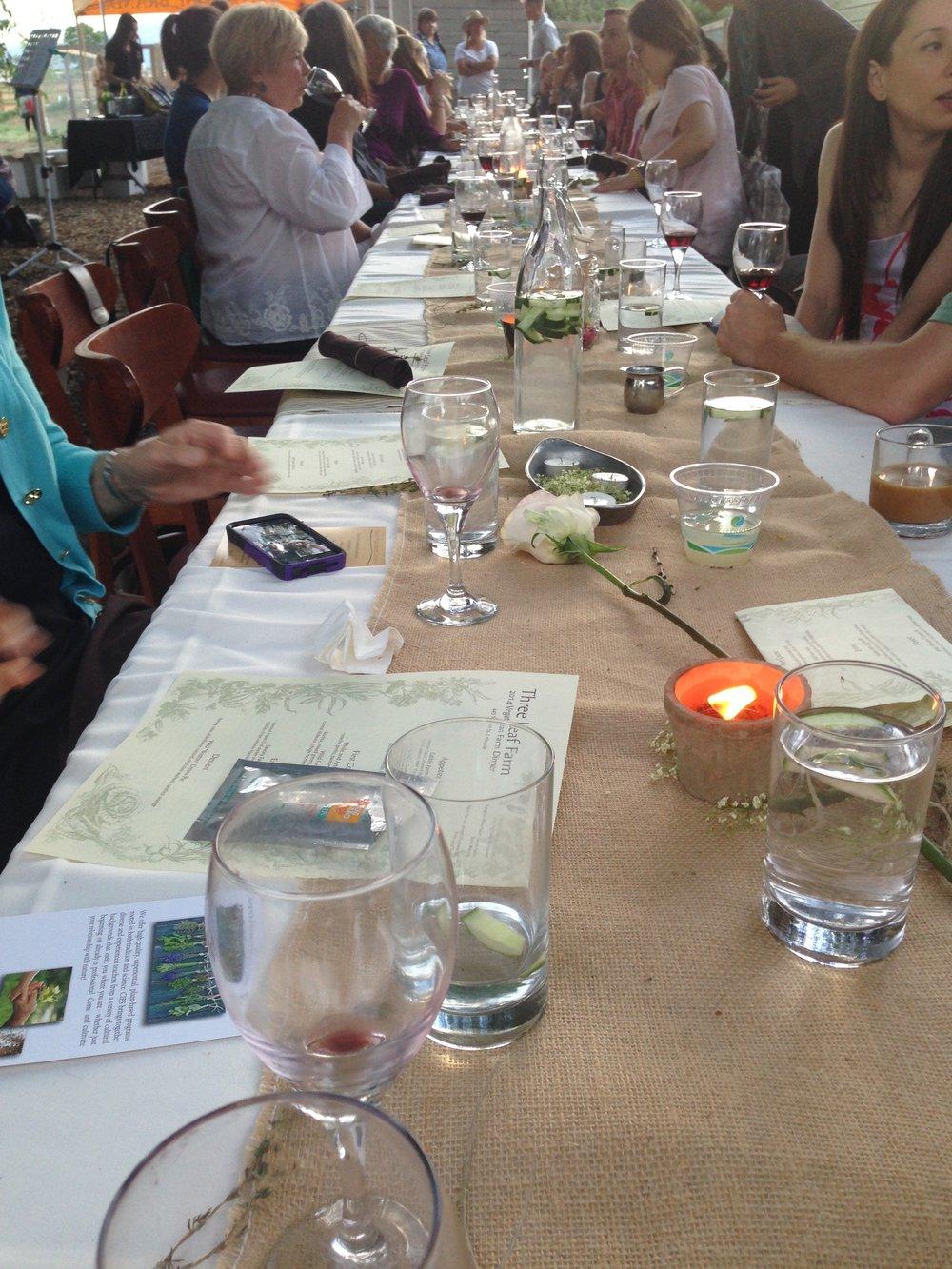 Marissa Chastain - Spiritual Event Farm Dinner.jpg
