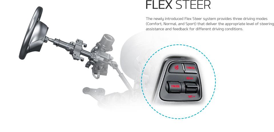 Flex Steer