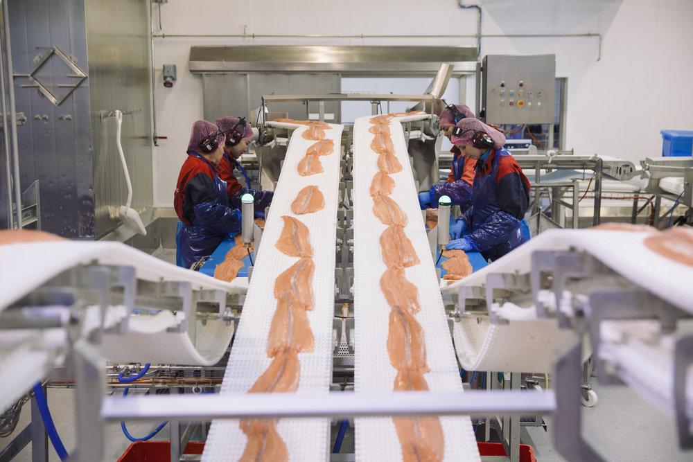 Filetfabrikken på Børøya tar hånd om ca 10 prosent av Nordlaks sitt råstoff og er samlokalisert med blant annet slakteri, bioteknisk fabrikk, administrasjon og konsernledelse på Børøya i Hadsel.