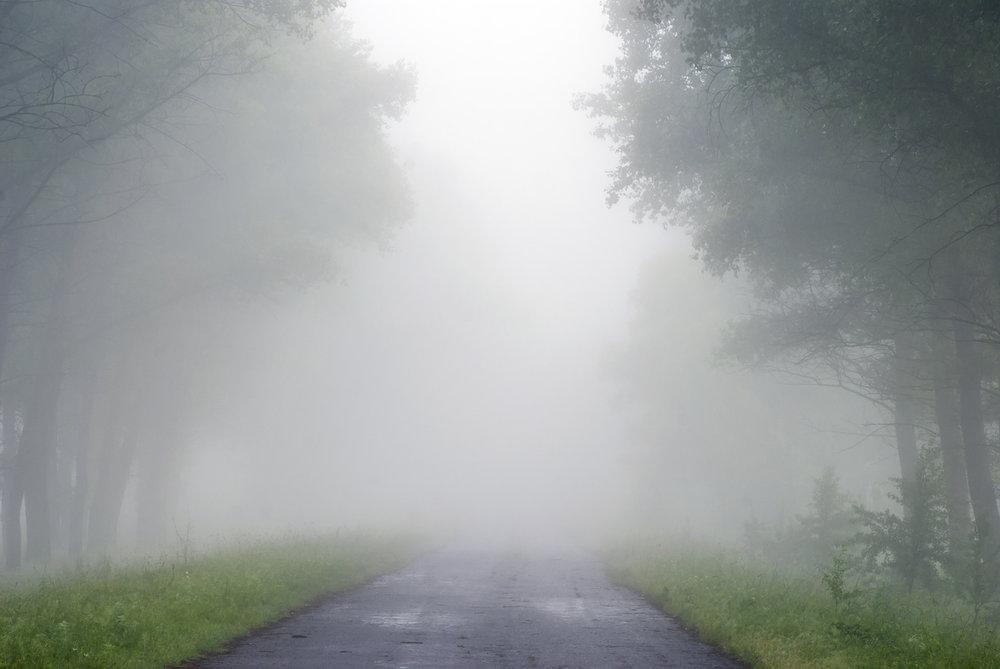 mist-fog.jpg