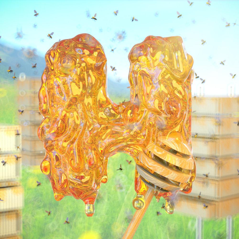 H for Honey!