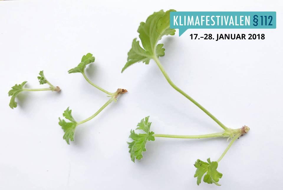 klimafestival plakat lds.jpg