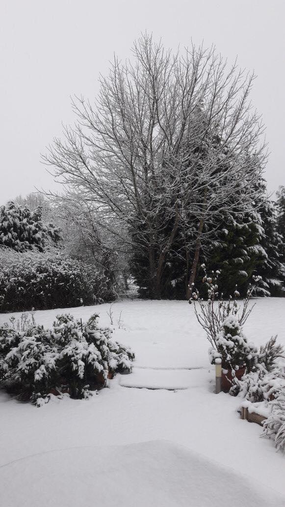 Schneeschatz1.jpg