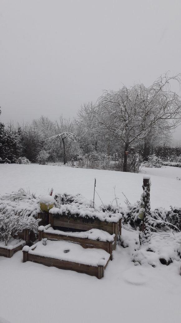 Schneeschatz2.jpg