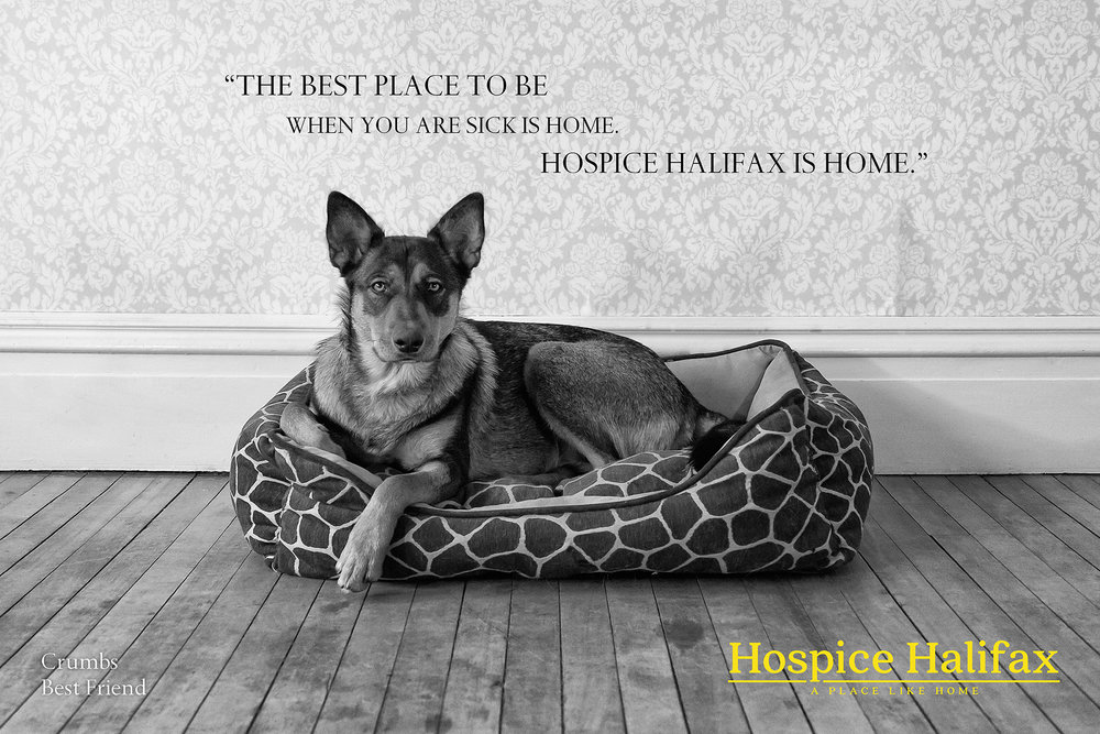 Hospice5_HR-4.jpg