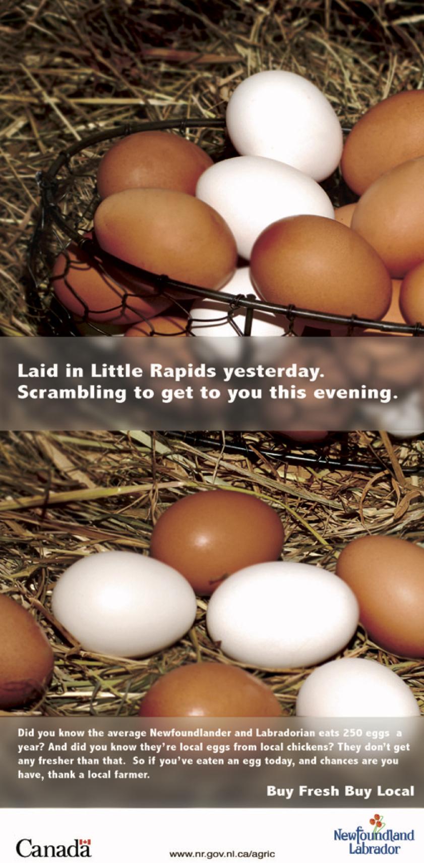poster- egg.jpg