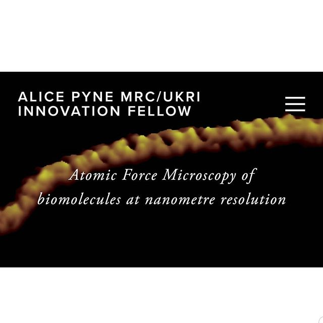 Visit our website for the latest updates about our group and research!  https://www.alicepyne.com  __________ #research #researchgroup #website #dna #afm #biophysics #biomolecules #ucl #lcn