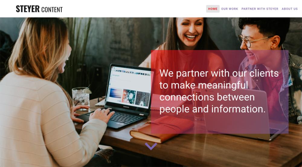 Steyer Homepage Website