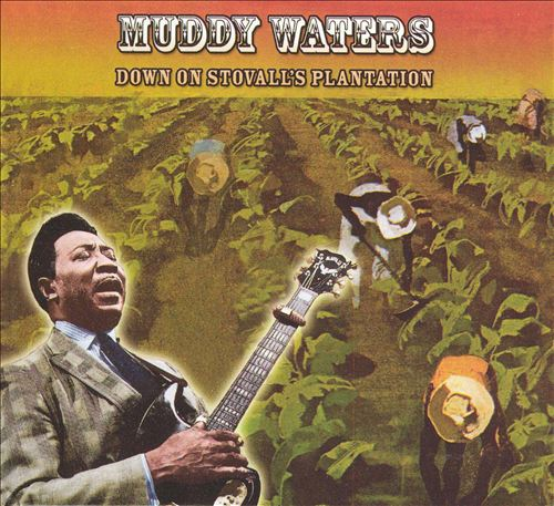 Music education/muddy waters