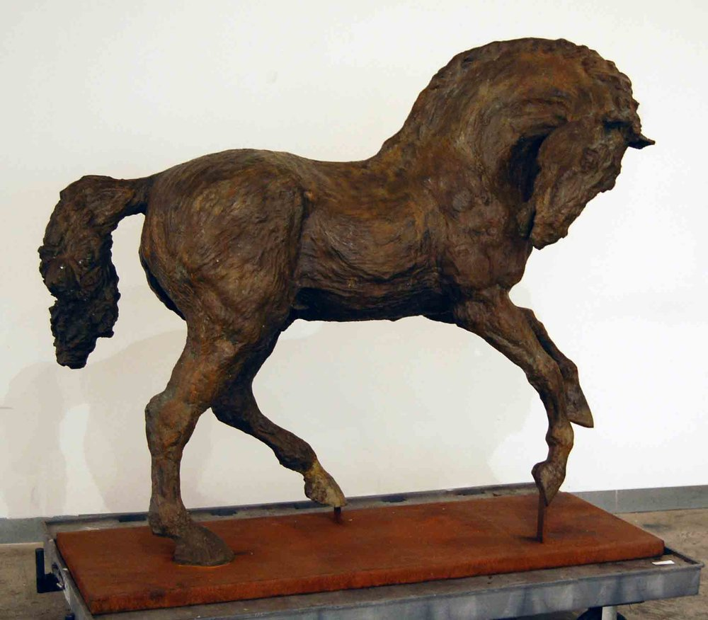 Horse Turning Head to the Right