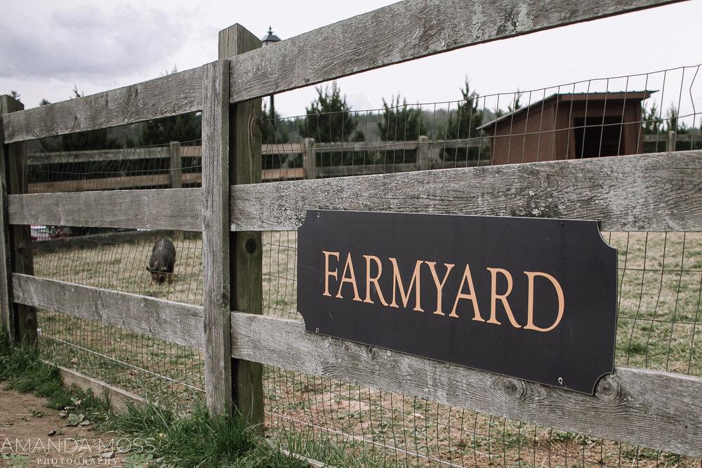 biltmore farmyard