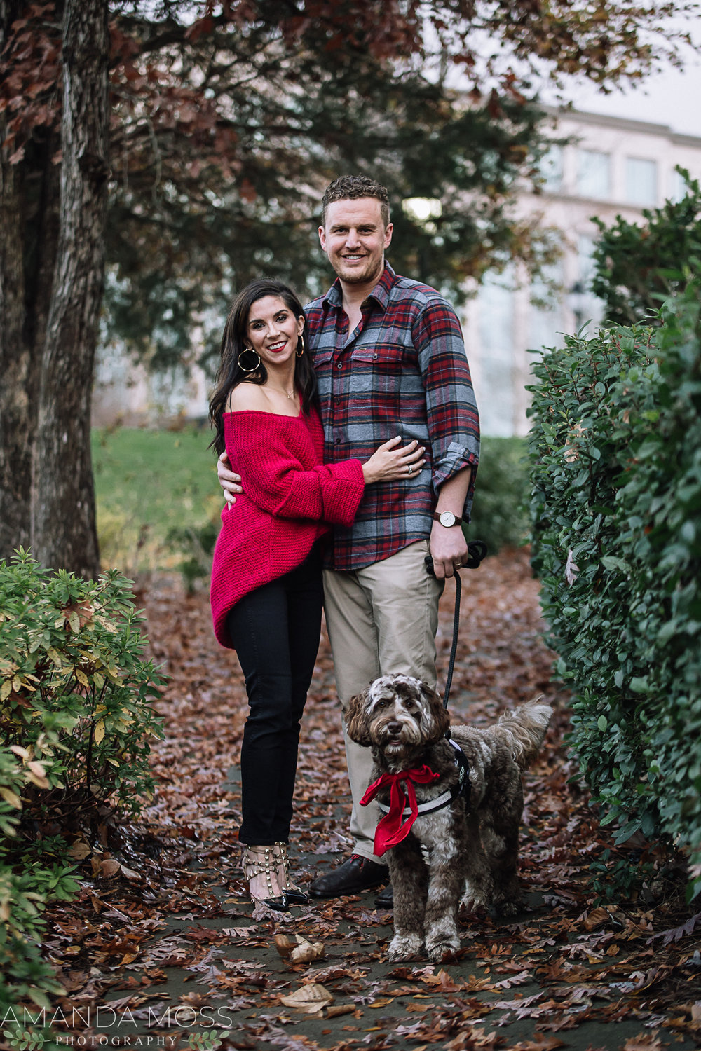 charlotte north carolina family portrait photographer winter christmas photos