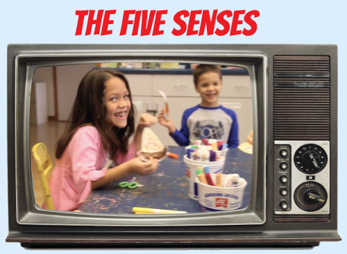 Website-tv-thefivesenses.jpg