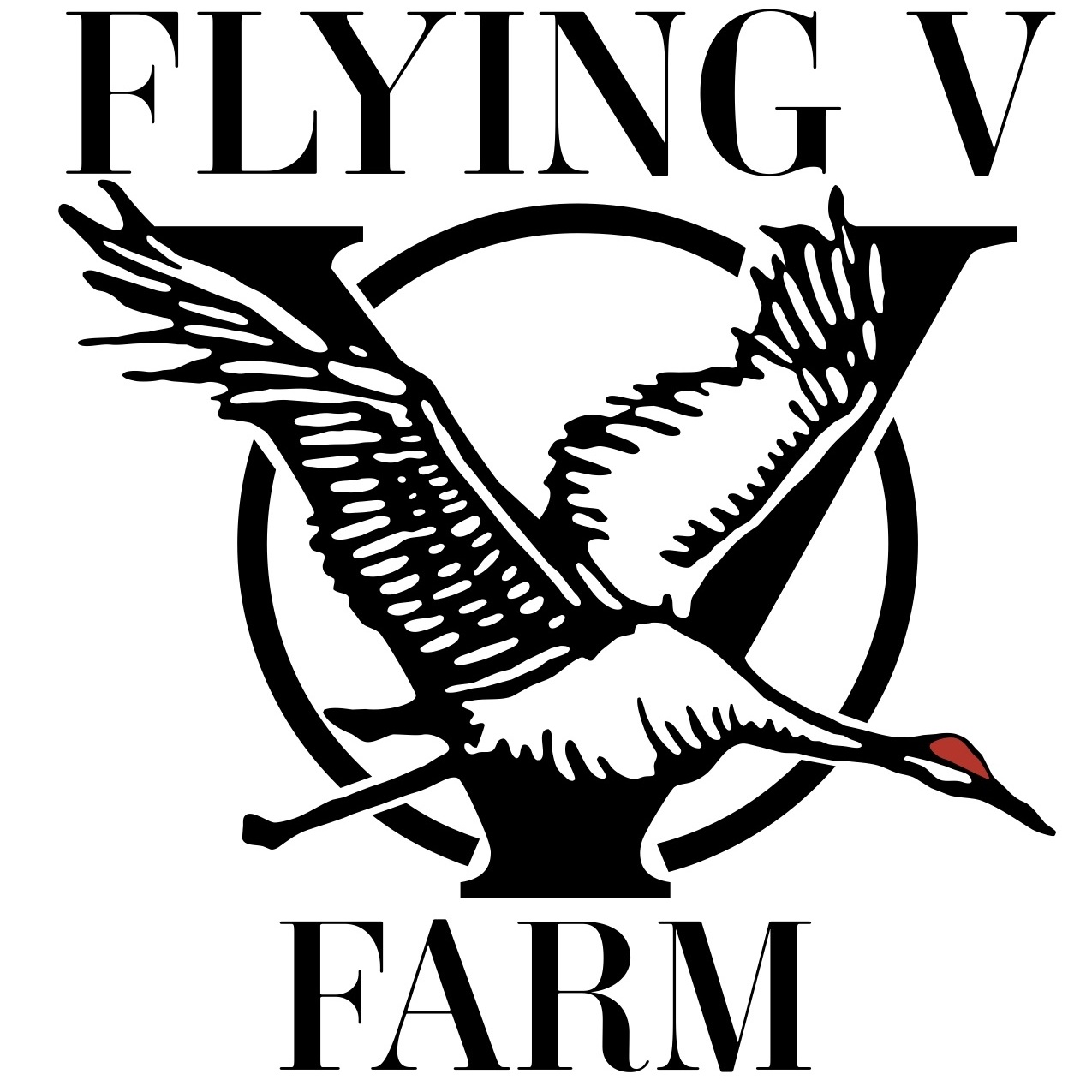 Flying V Farm