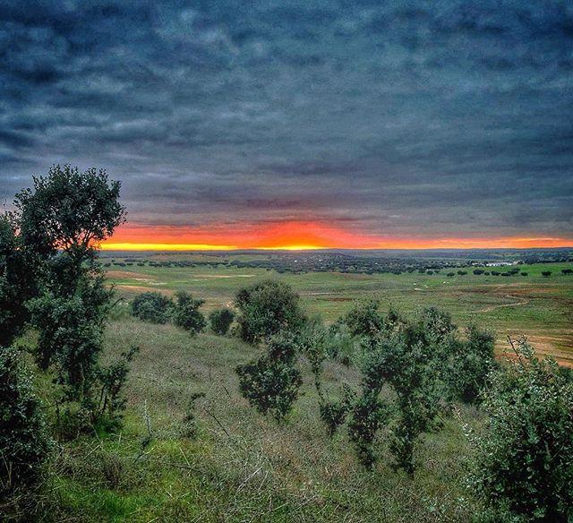 """"""" Este é mais um dos benefícios de trabalhar no campo! """" @luis_godinho_carvalho #VisitAvis 🌿 . . #natureza #campo #visitalentejo #visitportugal #fotododia #igers #igersportugal #sunset #finaldedia"""