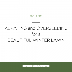 Tips-for-Aerating-and-Over-seeding-300x300.png