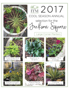 Cool-Season-Annuals-corner-planters-232x300.png