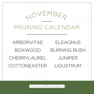 nov-pruning-calendar-300x300.png