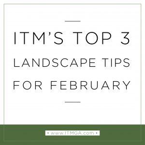 February-tips-01-300x300.jpg