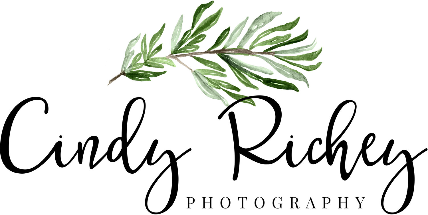 Cindy Richey Photography