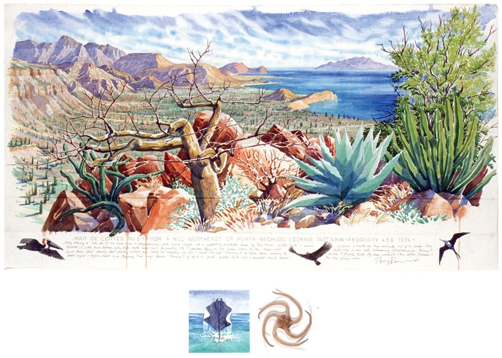 Tony Foster,  Mar de Cortes No 5 – from a Hill Northeast of Punta Mechudo Looking 340° NNW , 1994   |   Watercolor and graphite on paper, mixed media   |   16  5/8  x 31 in. / 3  3/4  x 7  5/8  in.  |  1990.1.27