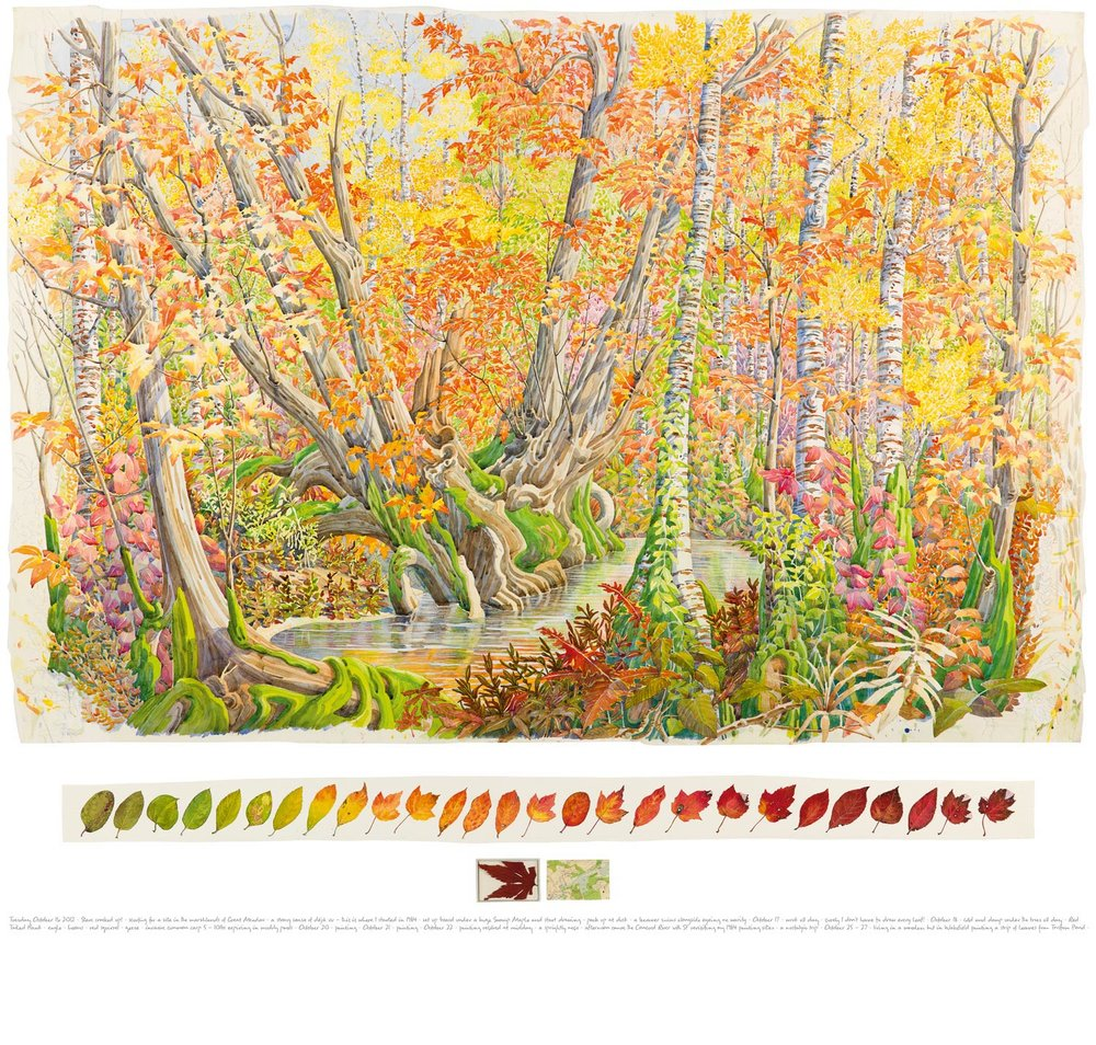 Tony Foster,  Fall Colour in Great Meadow, Concord , 2012  |  Watercolor and graphite on paper, maple leaf, acrylic box, map  |  36 x 52 3/4 in. / 3 3/8 x 47 5/8 in. / 2 1/8 x 6 1/2 in.