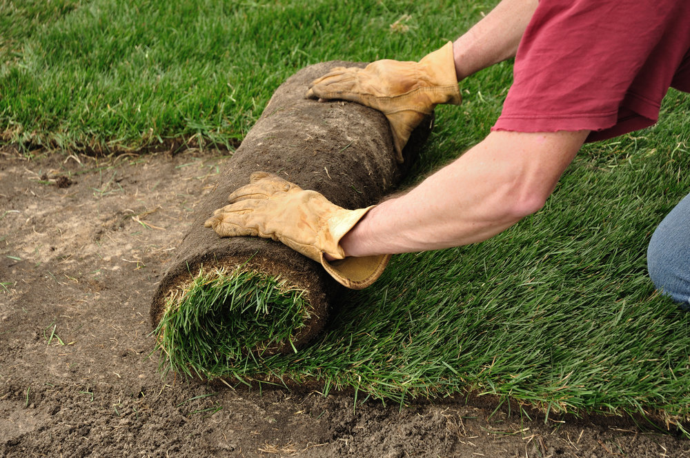 Landscape Services - Everything from sod and mulch installation to property clean-ups and retaining walls - we have you covered.