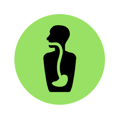 Stomach Icon Green.png