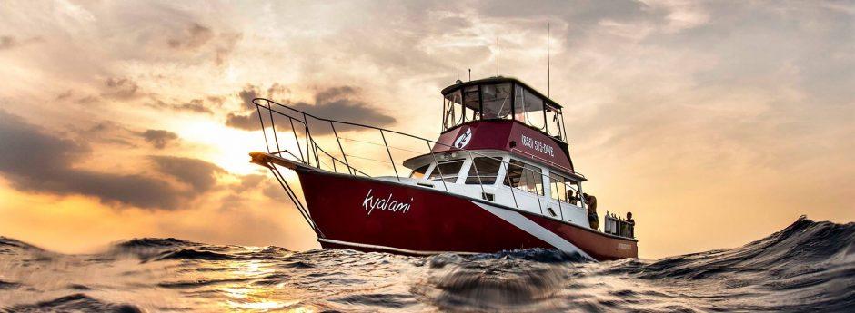 Boat sunset.jpg