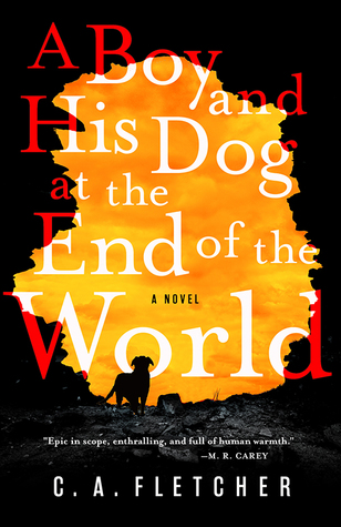 A boy and his dog at the end of the world.jpg