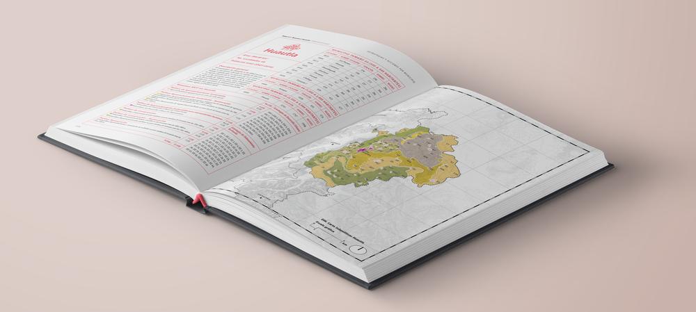 Inside-Book-Mockup-Hardcover-HuejutlaInt.png