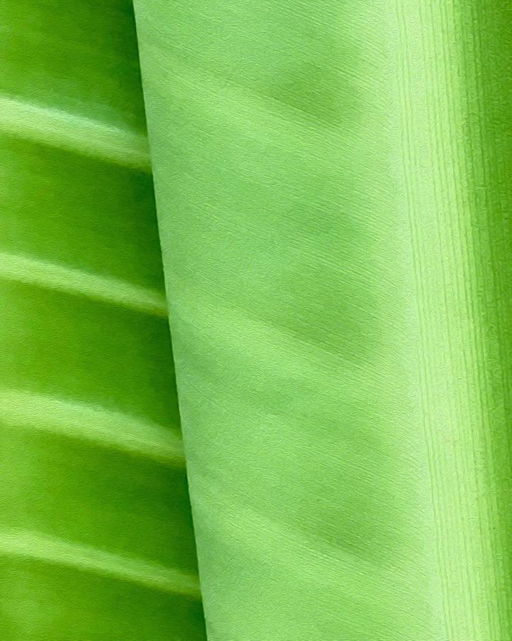 Unfurling Green - 16