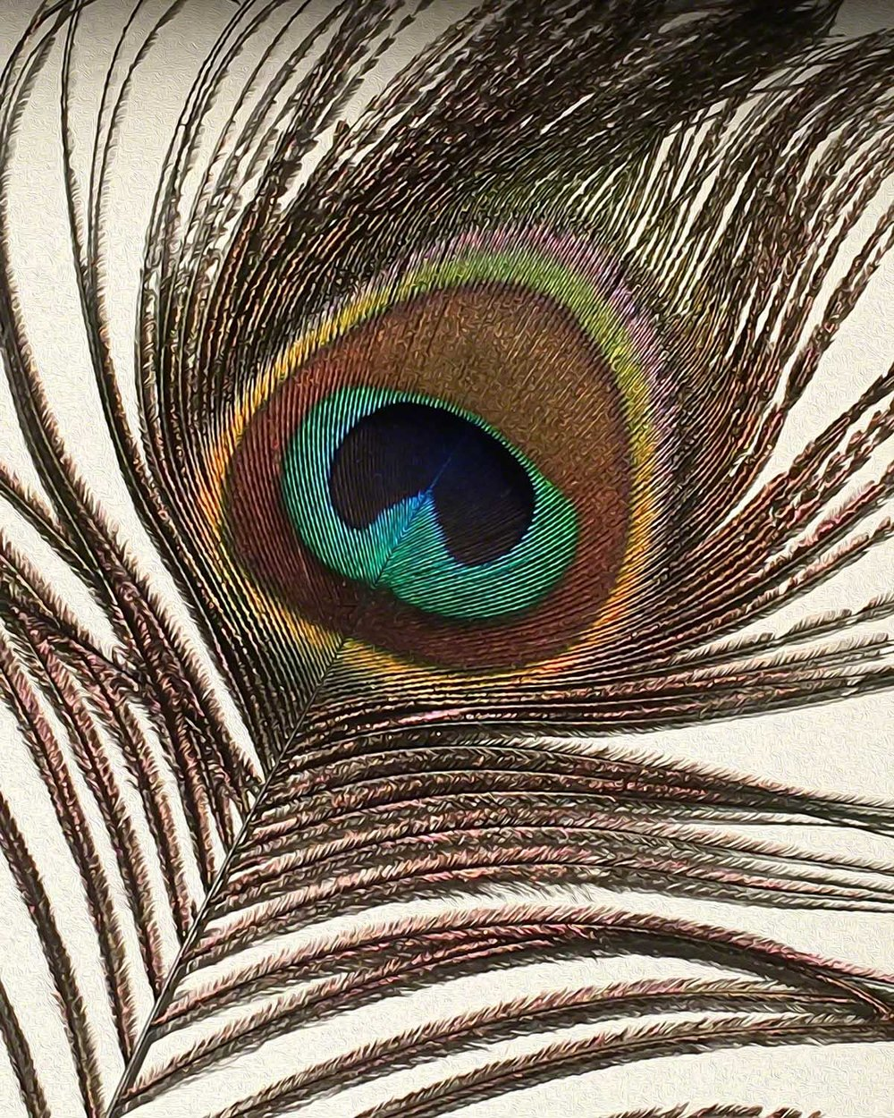 Primal Eye - 20