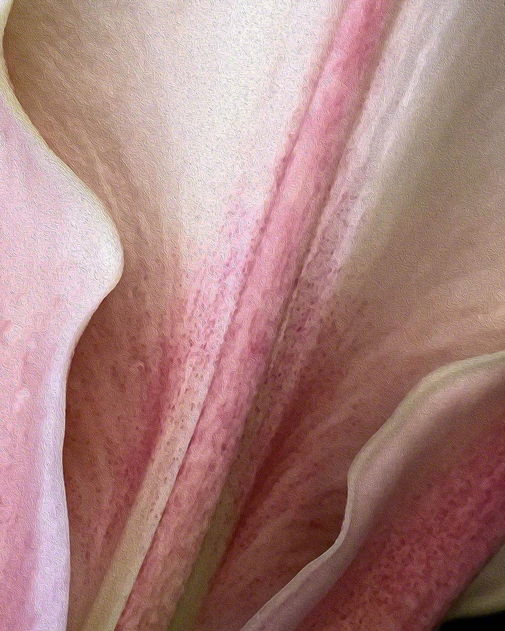 Sensual Form - 16