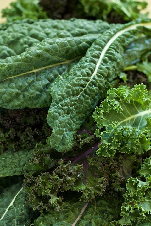 vegetable-1488246_960_720.jpg