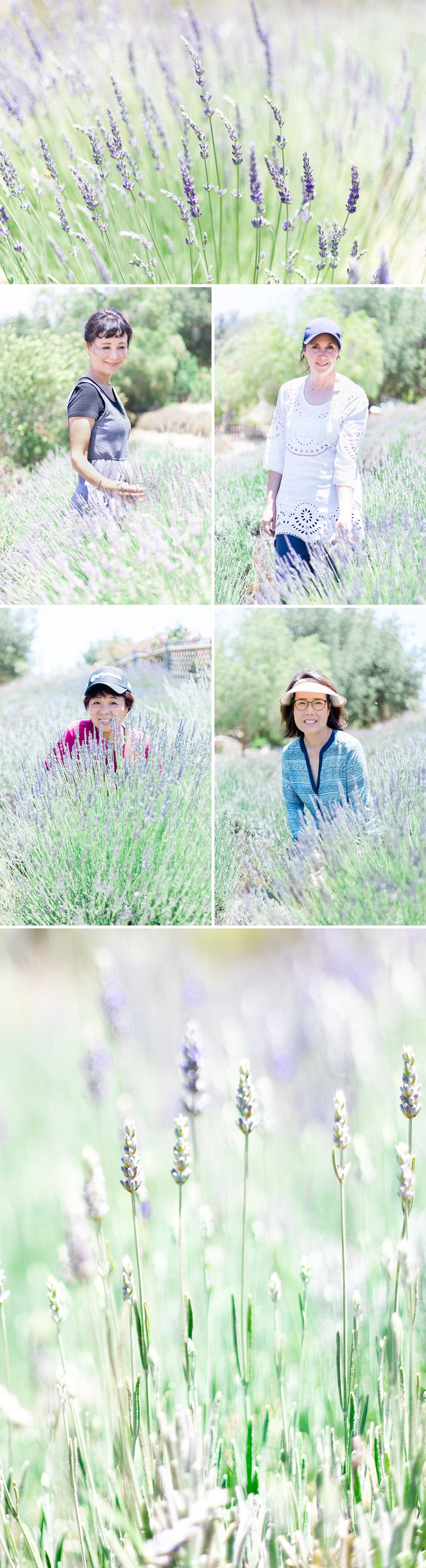 Lavender_Farm_Post_0011.jpg