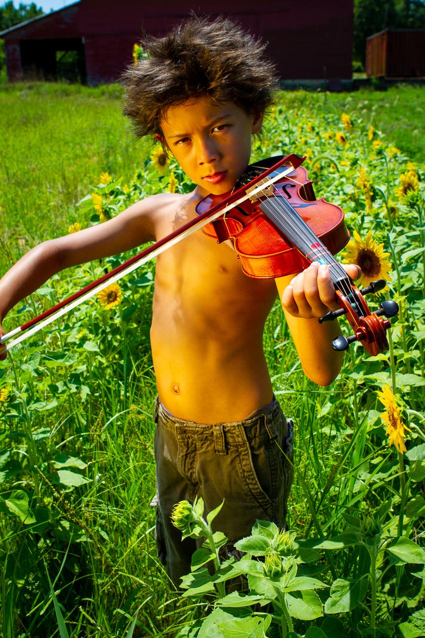 Violin Sunflowers-3.jpg